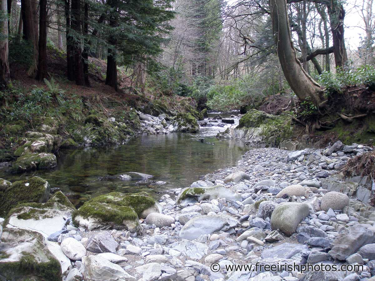 the shimna river essay
